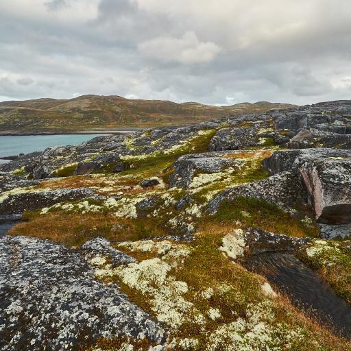 Unberührte Natur an der Barentssee