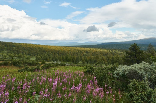 Blick über die Berge des Ural