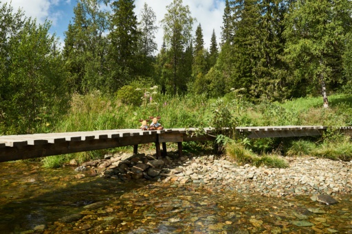 Brücke am Pechora